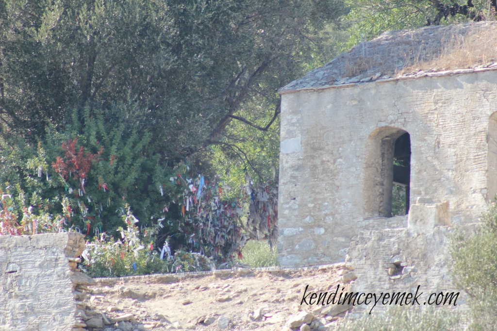 Kamelya Adası(Manastır)